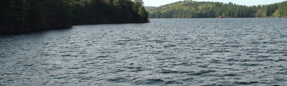 A view of Lake Sunapee